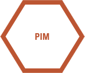 PIM, product information management