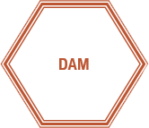 DAM, Digital Asset Management